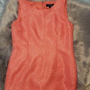 Kasper dress size 14